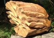 wooden_head_back-jpg
