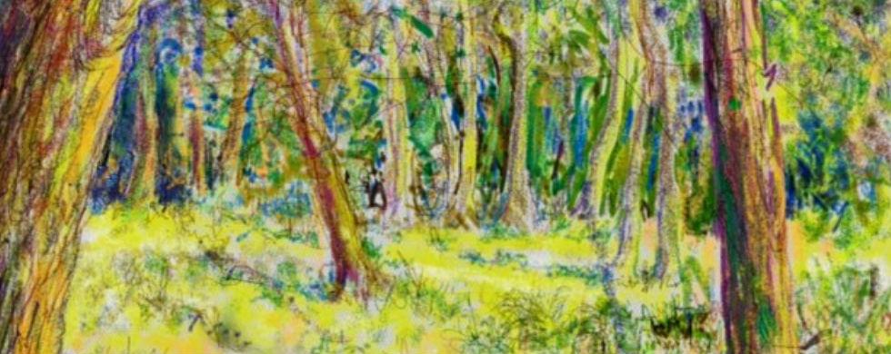 woodland_scaled
